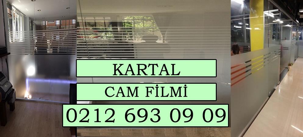 Kartal Cam Filmi